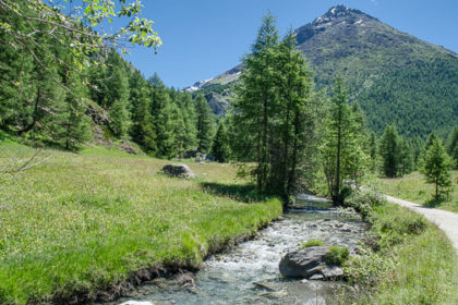 Wide view of shallow valley with mountain stream beside footpath.