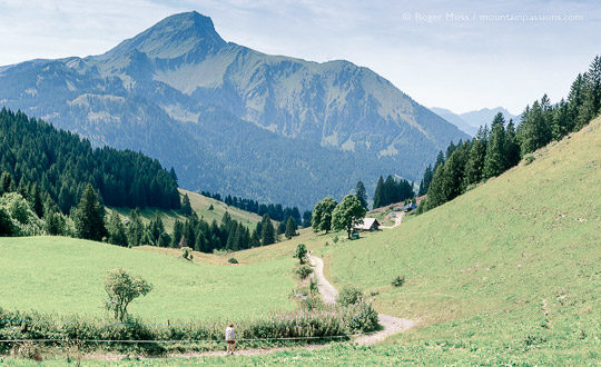 Wide view of walkers on mountain footpath among summer pastures