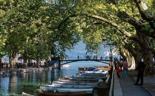 Mid-summer adds colour to a lazy lakeside promenade, while boats slumber in le Petit Port, Annecy
