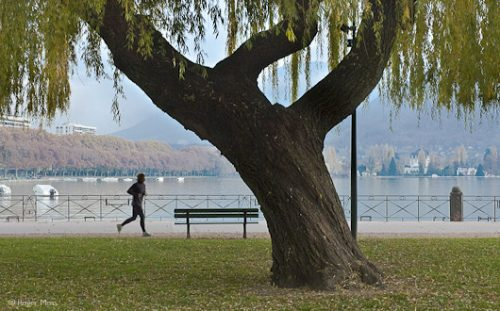 Jogger on the lakeside, Annecy