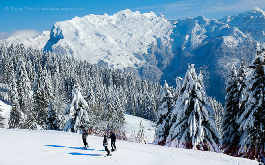 Overview of skiers looking at mountain views with snow-covered forests at Samoens, French Alps