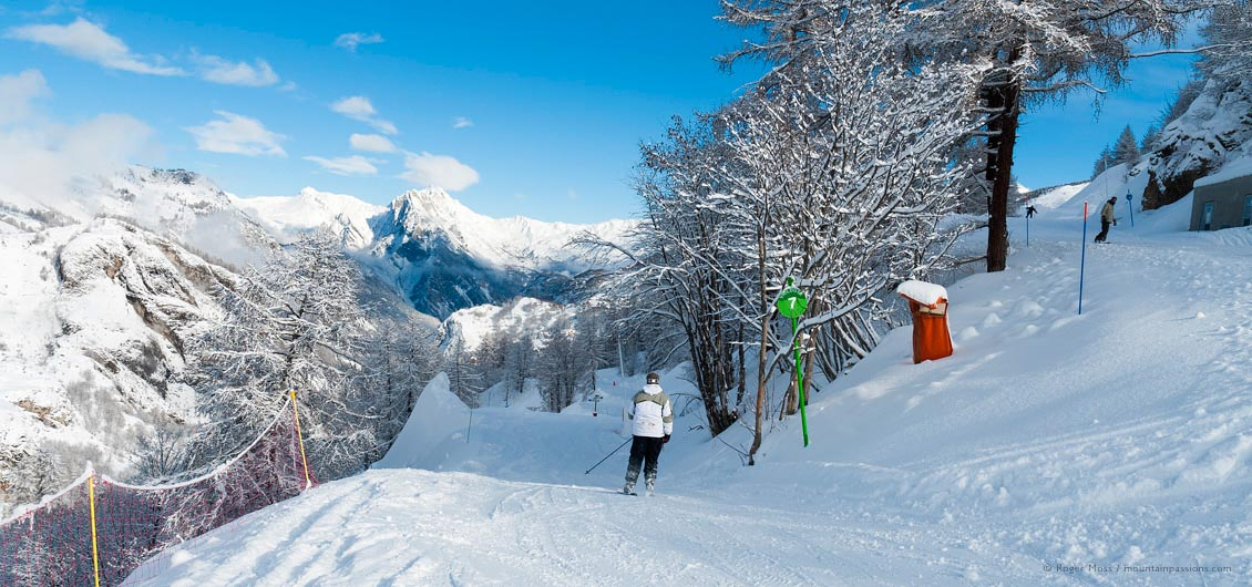 Skier on tree-lined piste after fresh snowfall