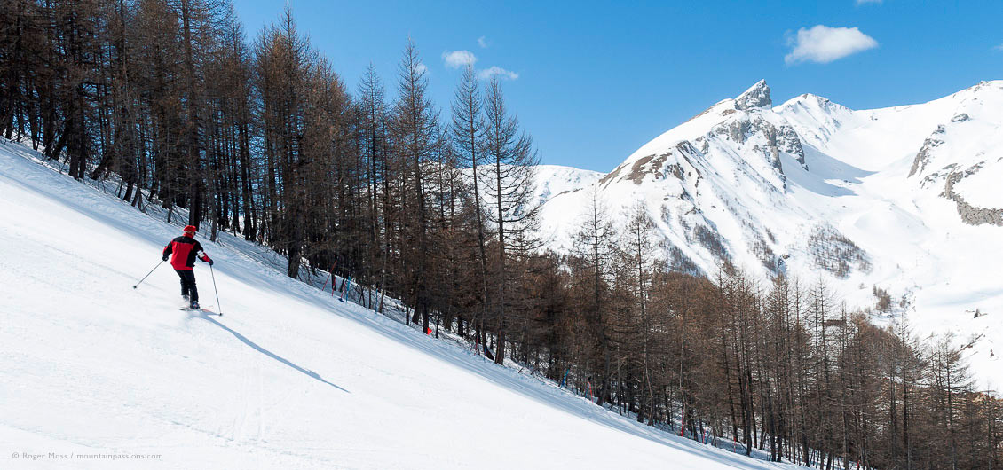Lone skier descending tree-lined piste with mountains in background