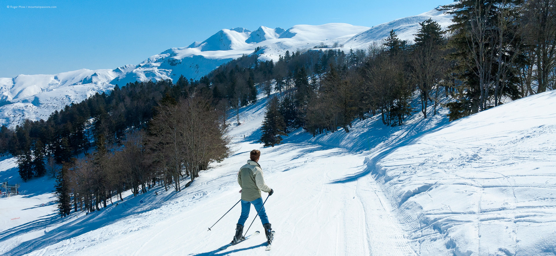 Young skier among unspoilt mountain scenery with pine trees