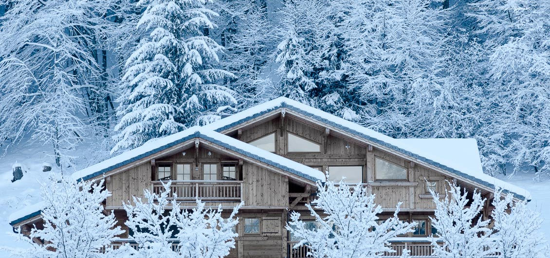Facacde of Alpine-style mountain chalet with snow-covered forest