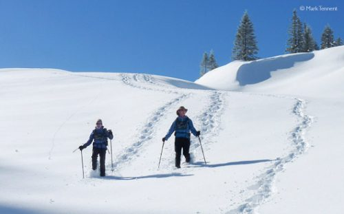 Couple snow-shoeing in deep snow on the long-distance traverse of the Chartreuse.