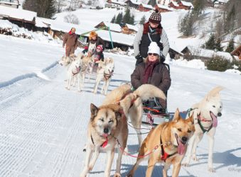 Dog-sledding teams with passengers, Vallée d'Abondance