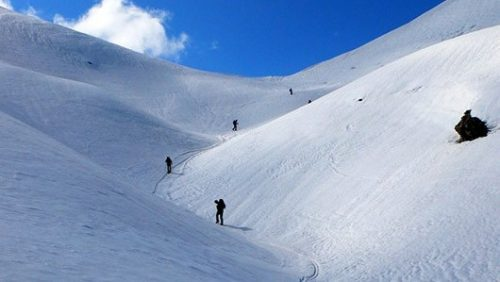Ski touring, group climbing upwards on snow
