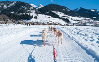Chippewa dog-sledding, Vallée d'Abondance
