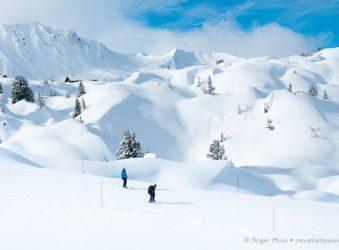 Fresh snow, snowboarders, La Plagne