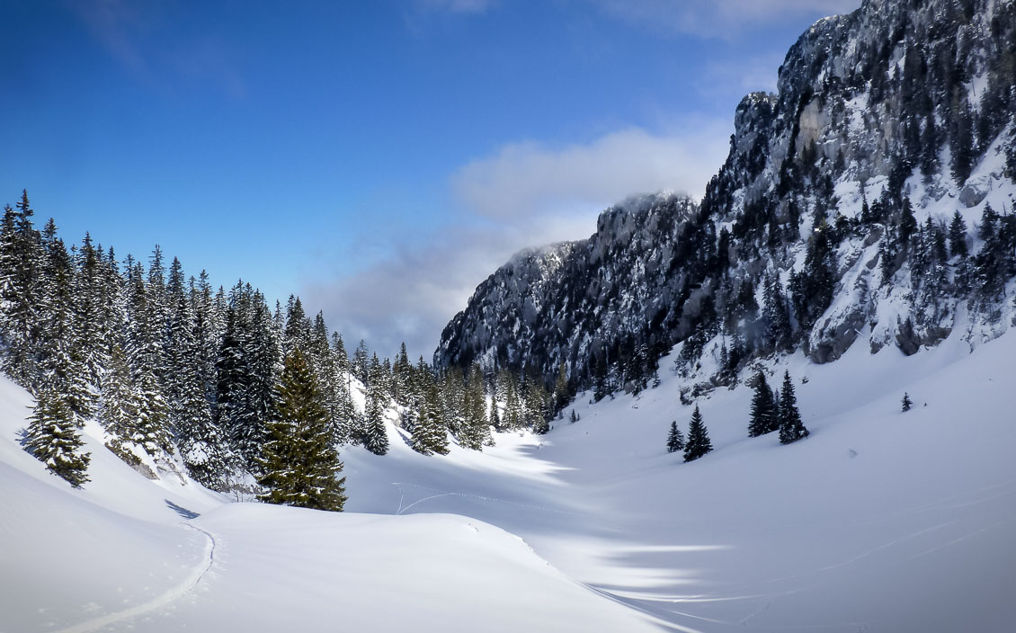 Snow-covered valley beside forest in the Massif de la Chartreuse, French Alps.