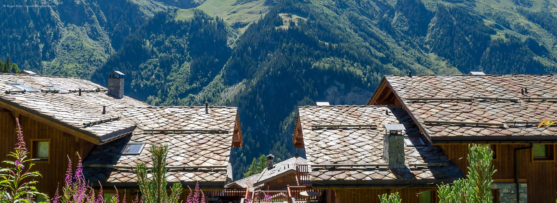 french mountain property
