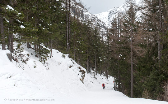 View of skier on piste among forest above Vallorcine