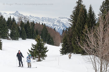 Two couples walking with snowshoes on mountainside with trees near Praz de Lys, French Alps.