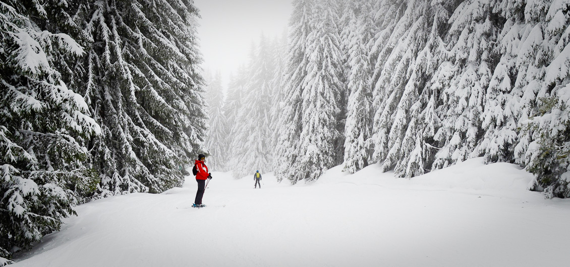 Skiers on Marvel piste, Morillon, Grand Massif