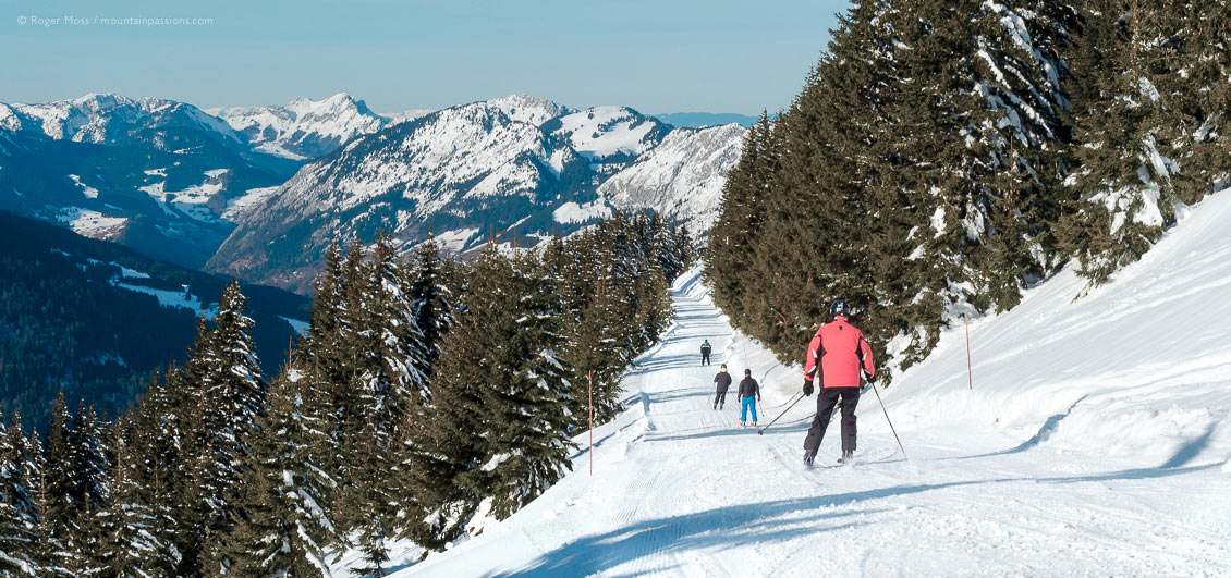 Wide rear view of skiers descending piste between forests above Chatel, French Alps