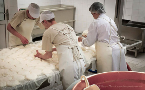 Making Reblochon cheese at the Fruitière de Morzine, French Alps