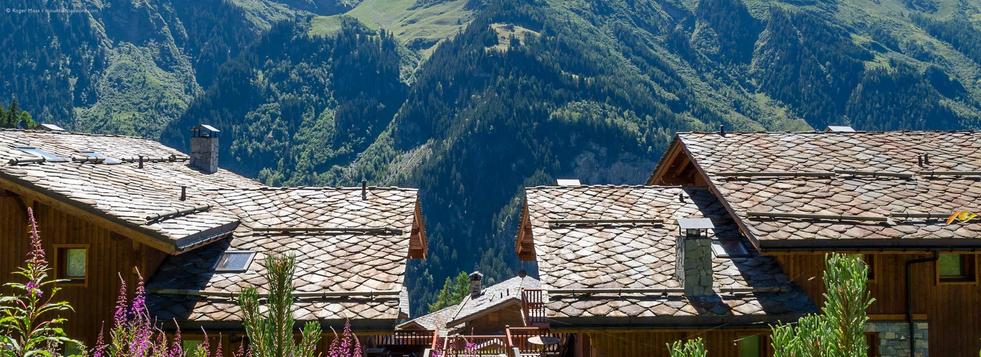 Sainte-Foy-Tarentaise chalet roofs