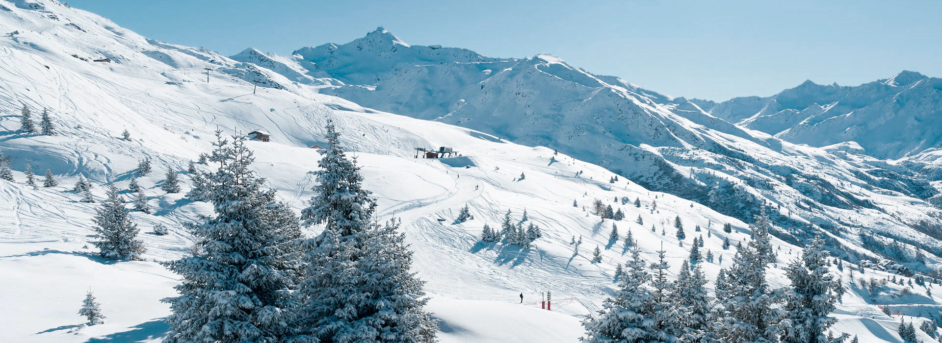 Wide overview of mountainside with snow-covered trees and skier on piste