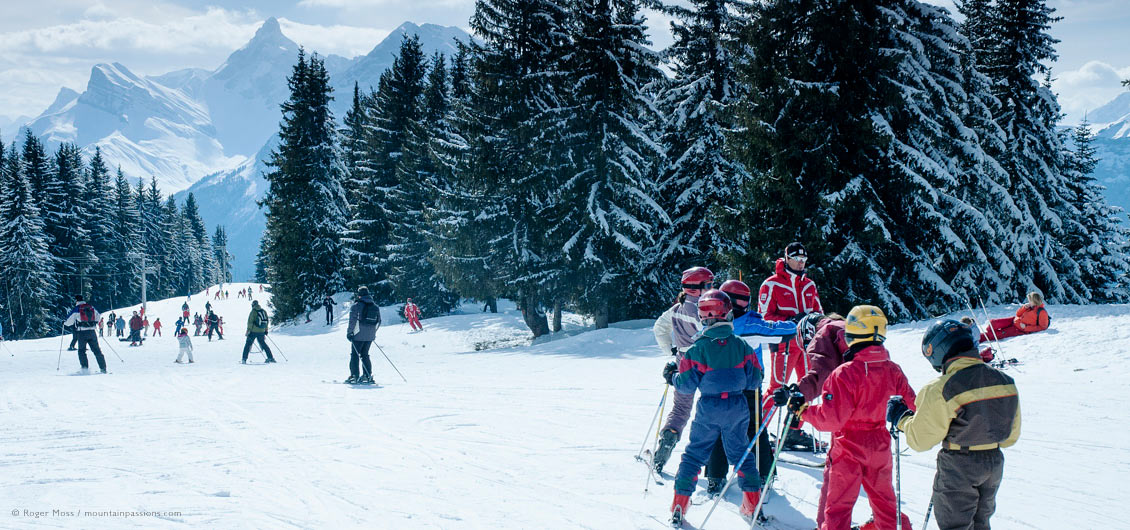 Ski instructor with young skiers on tree-lined piste