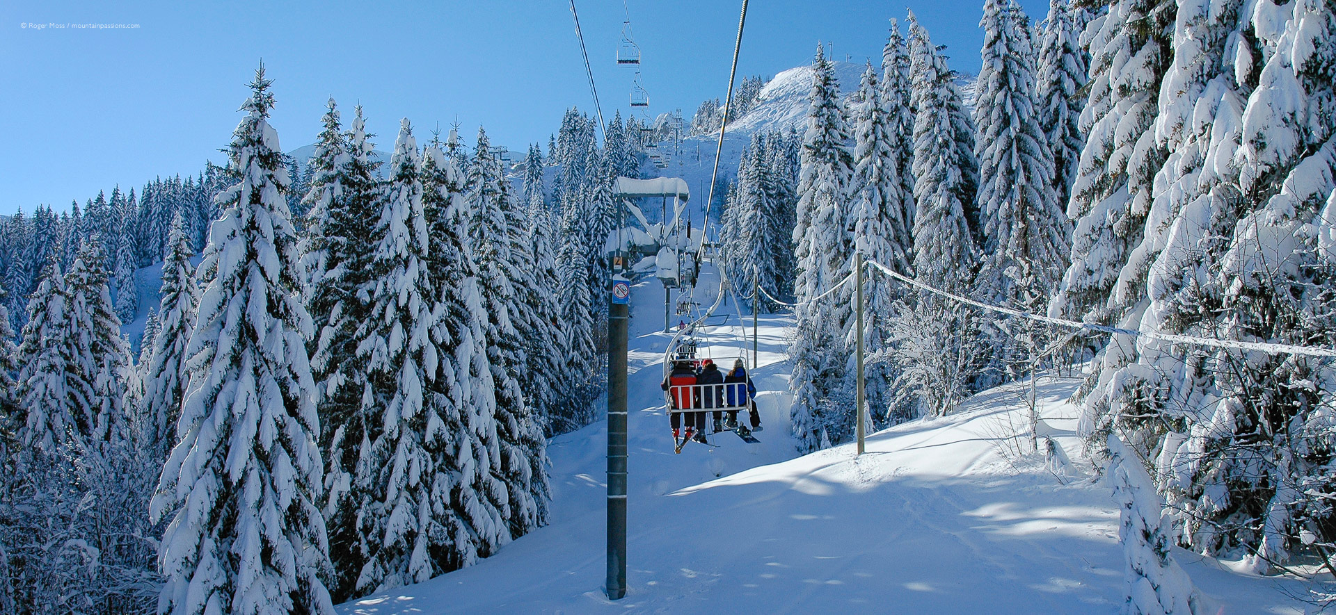 View from chair-lift between snow-covered pine forests between Samoens and Flaine.