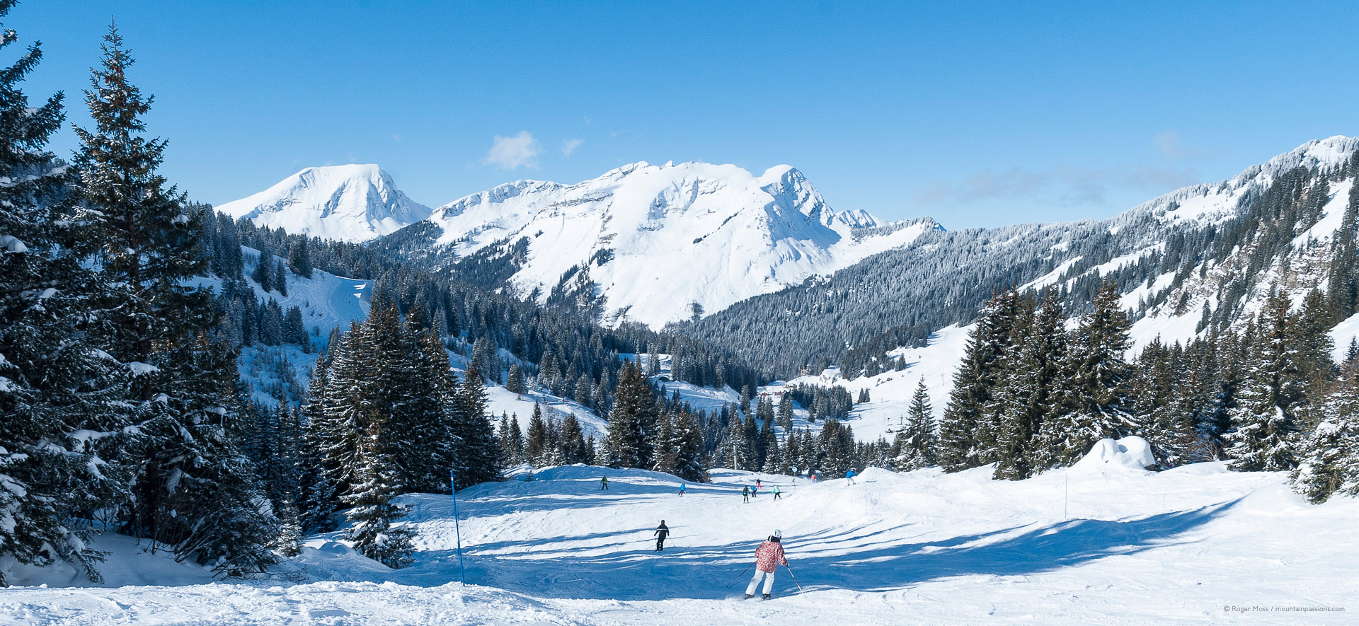 Skiers descending wide piste between trees with snowy mountain background.