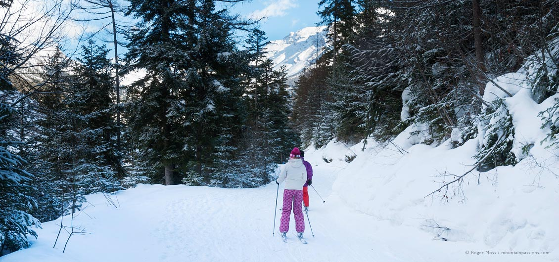 Two skiers on wooded mountain trail