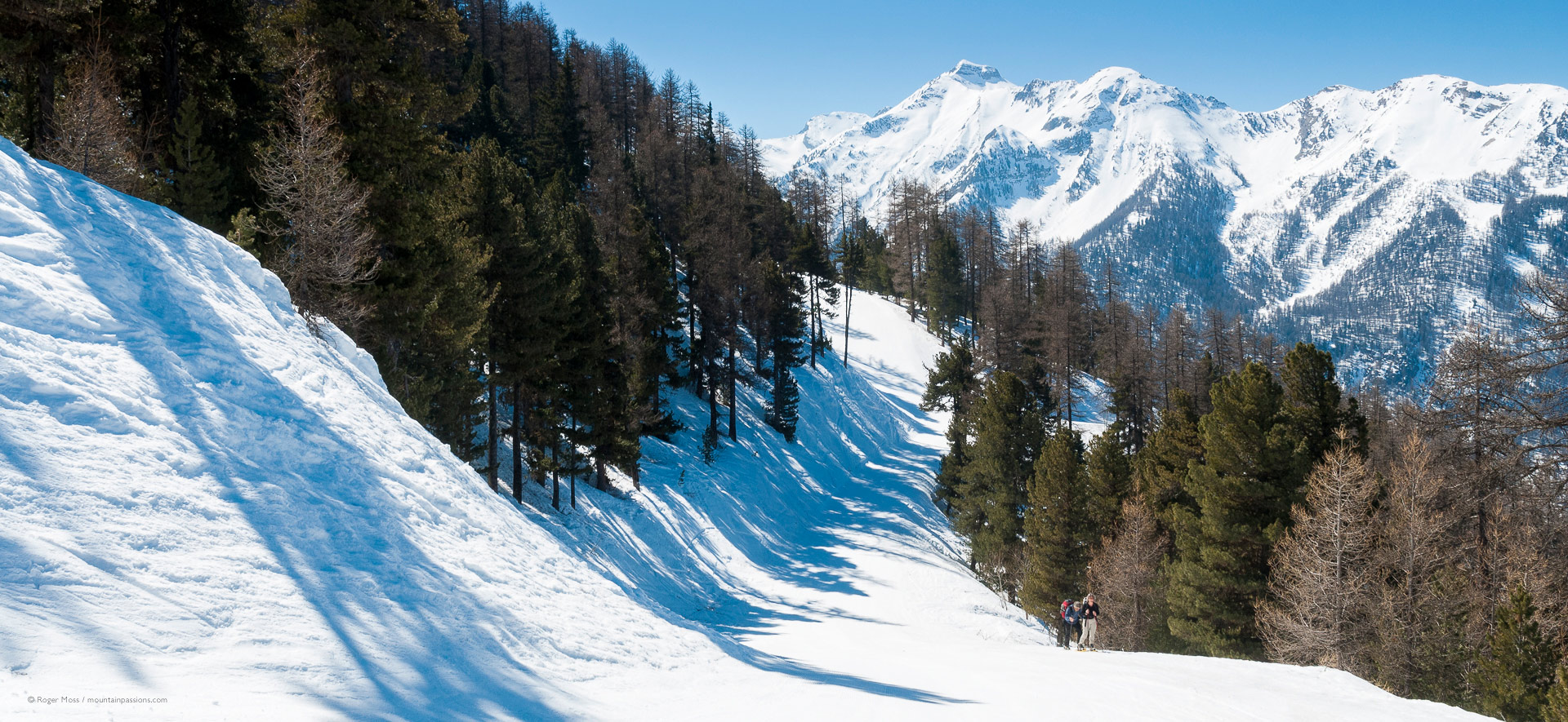 Two walkers beside tree-lined ski piste at Les Orres 1850
