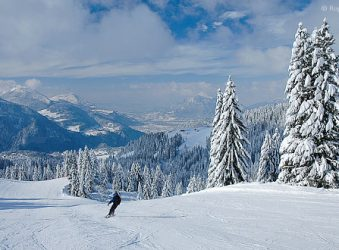 Skier, snowy mountains and trees, Grand Massif