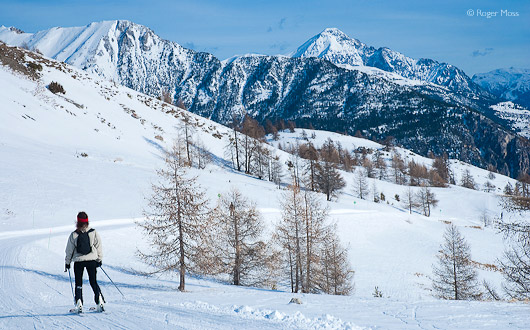 Le Chemin piste with skier, Serre Chevalier