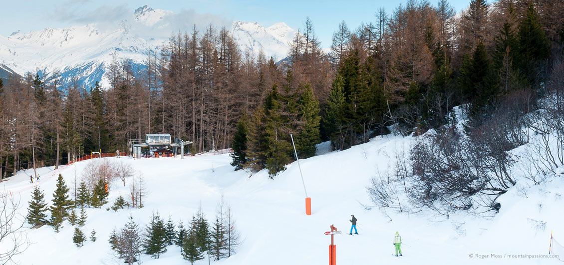 High view of piste with skiers with forest and ski lift at La Norma