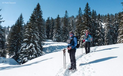 snow-shoeing in the Chartreuse