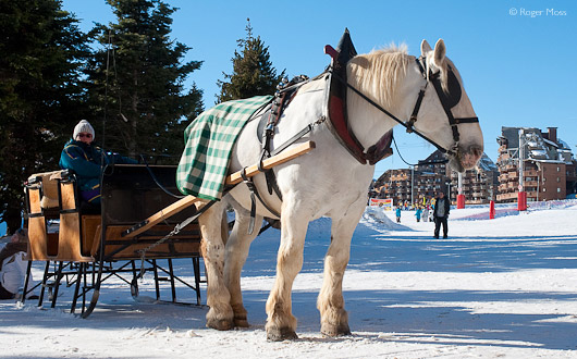 horse-drawn sleigh in Avoriaz village centre