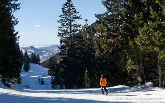 View of skier of woodland piste between Praz-de-Lys and Sommand, French Alps.