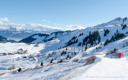 Wide view of skiers on gentle piste above Praz de Lys, French Alps.