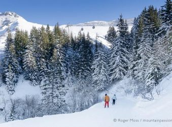 Two skiers on piste below forest at Valmorel, Savoie, French Alps