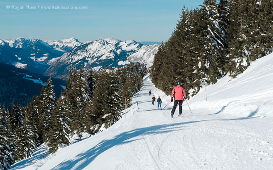 Rear view of skiers descending tree-lined piste on fine sunny day at Chatel, Portes du Soleil, French Alps.